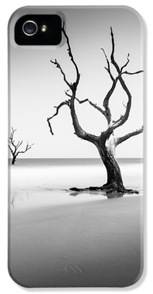 Bull iPhone 5 Case - Boneyard Beach Xiii by Ivo Kerssemakers