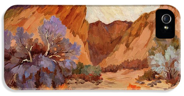 Box iPhone 5 Cases - Box Canyon iPhone 5 Case by Diane McClary