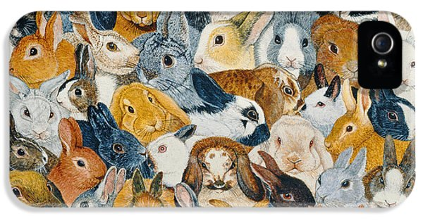 Bright Eyes IPhone 5 Case by Pat Scott