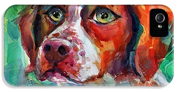 Brittany Spaniel Watercolor Portrait By IPhone 5 Case