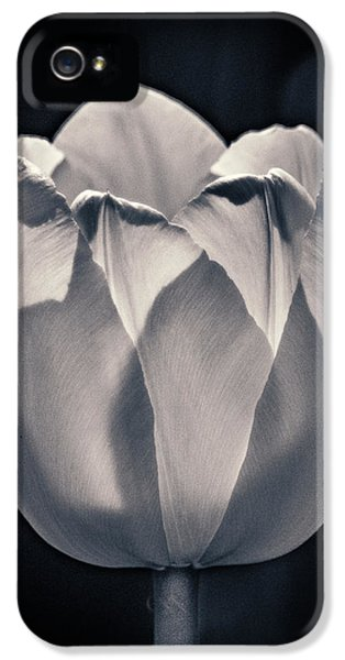IPhone 5 Case featuring the photograph Brooding Virtue by Bill Pevlor