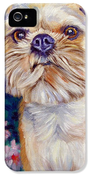 Brussels Griffon IPhone 5 Case by Lyn Cook
