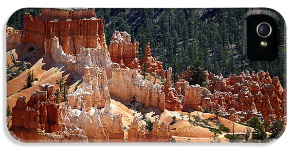 Mountain iPhone 5 Cases - Bryce Canyon  iPhone 5 Case by Jane Rix