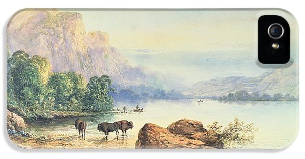 Buffalo Watering IPhone 5 Case by Thomas Moran