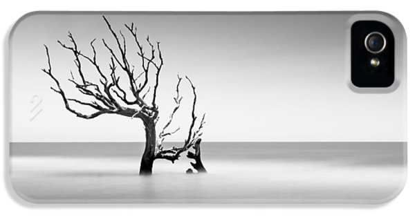 Bull iPhone 5 Case - Boneyard Beach  Xiv by Ivo Kerssemakers