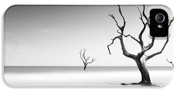 Bull iPhone 5 Case - Boneyard Beach Iv by Ivo Kerssemakers