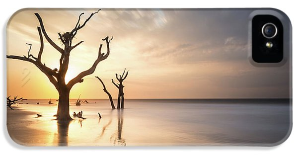 Bull iPhone 5 Case - Bulls Island Sunrise by Ivo Kerssemakers