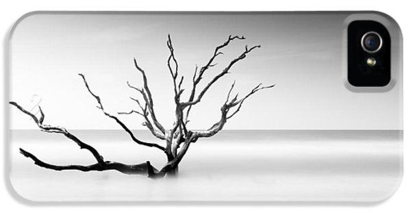 Bull iPhone 5 Case - Boneyard Beach Vi by Ivo Kerssemakers