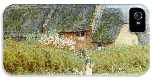 Dorset iPhone 5 Case - Buttercups by Helen Allingham