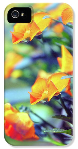 IPhone 5 Case featuring the photograph Buttercups by Jessica Jenney