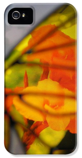 Butterfly Florals  Collection D IPhone 5 Case by Debra     Vatalaro