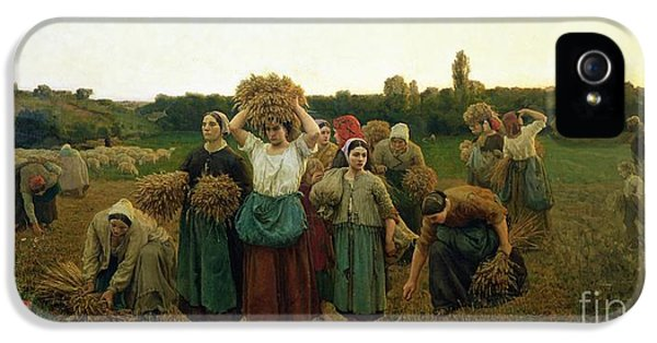 Calling In The Gleaners IPhone 5 Case