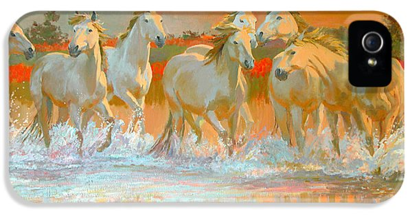 Horse iPhone 5 Case - Camargue  by William Ireland