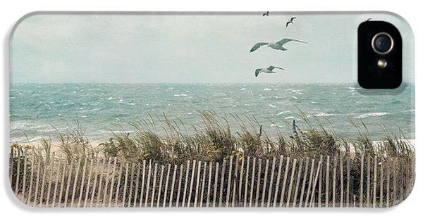 Cape Cod Beach Scene IPhone 5 Case