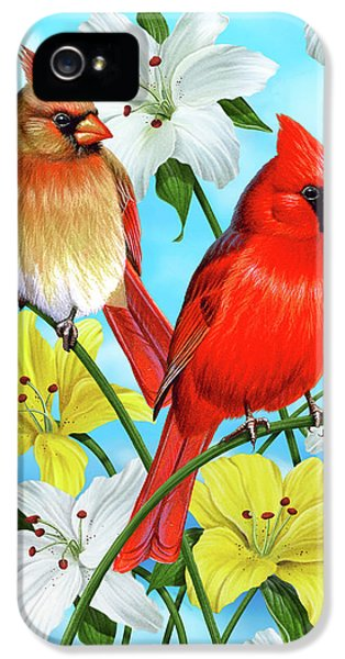 Cardinal Day IPhone 5 Case by JQ Licensing