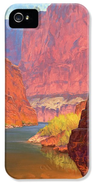 Grand Canyon iPhone 5 Case - Carving Castles by Cody DeLong