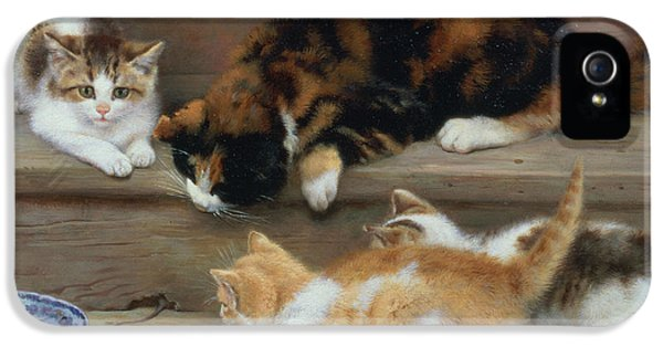 Cat And Kittens Chasing A Mouse   IPhone 5 / 5s Case by Rosa Jameson