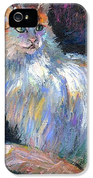 Cat In A Sun Painting By Svetlana IPhone 5 Case