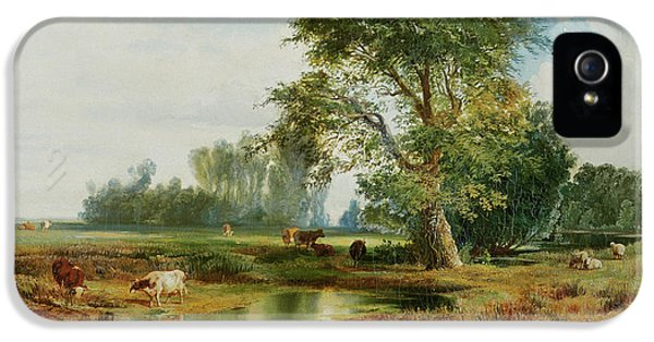 Cattle Watering IPhone 5 Case by Thomas Moran