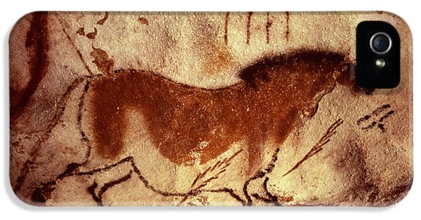 Cave Painting Of A Horse IPhone 5 Case by Unknown