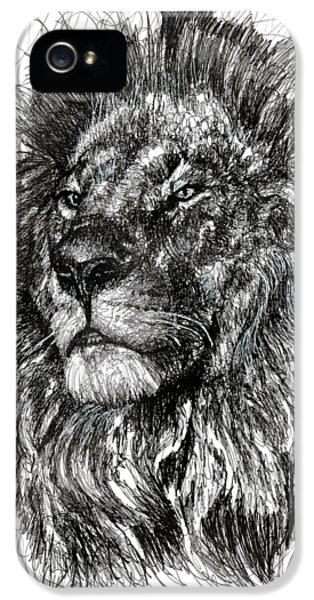 Lion iPhone 5 Case - Cecil The Lion by Michael Volpicelli