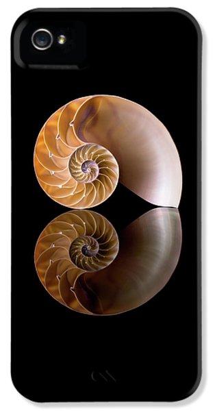 Chambered Nautilus IPhone 5 Case