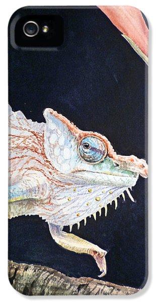 Chameleon IPhone 5 Case