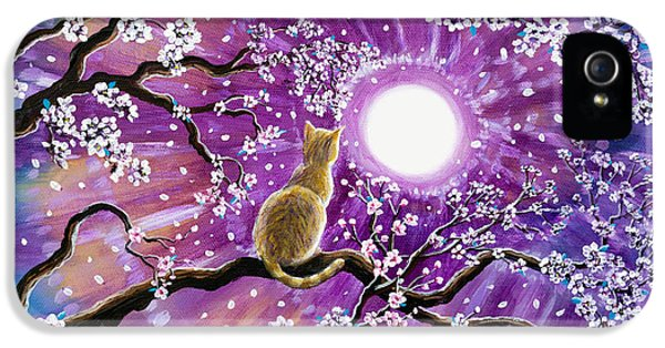 Champagne Tabby Cat In Cherry Blossoms IPhone 5 Case