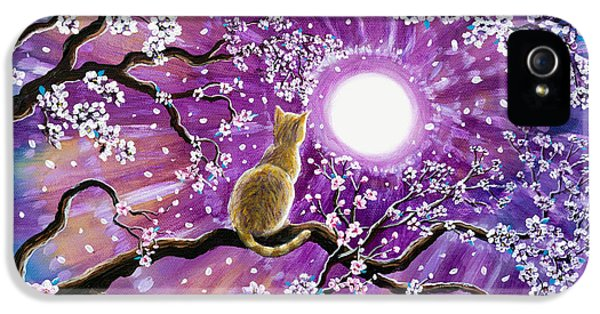 Champagne Tabby Cat In Cherry Blossoms IPhone 5 Case by Laura Iverson