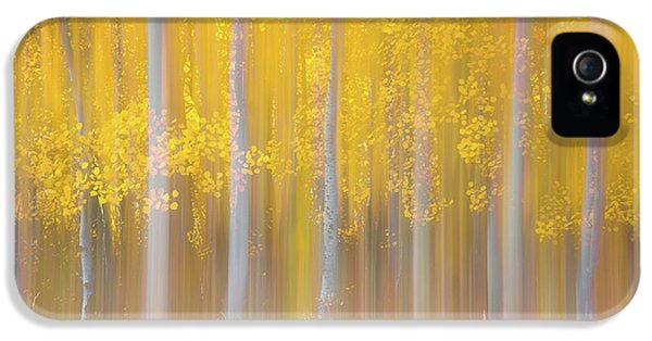 Changing Seasons IPhone 5 Case by Darren White