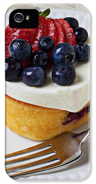Cheese Cream Cake With Fruit IPhone 5 Case