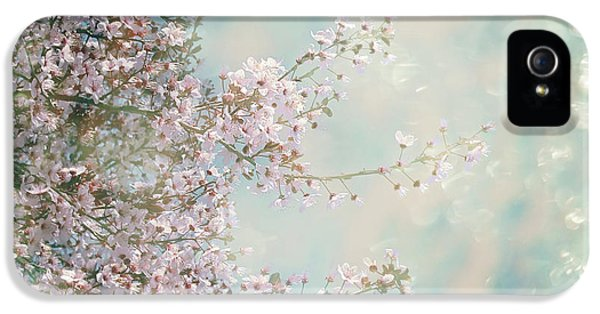 IPhone 5 Case featuring the photograph Cherry Blossom Dreams by Linda Lees