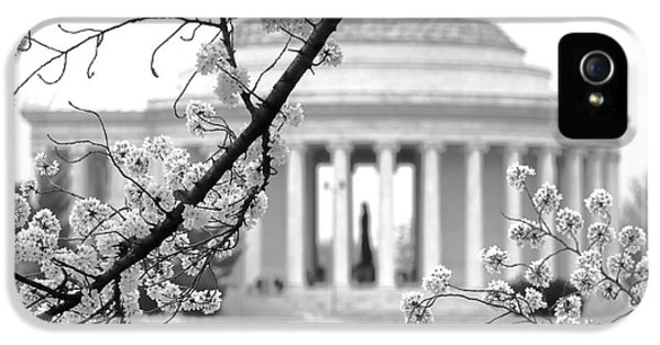 Cherry Tree And Jefferson Memorial Elegance  IPhone 5 Case by Olivier Le Queinec