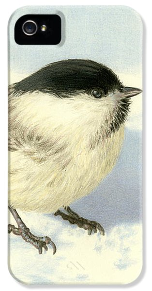 Chilly Chickadee IPhone 5 Case