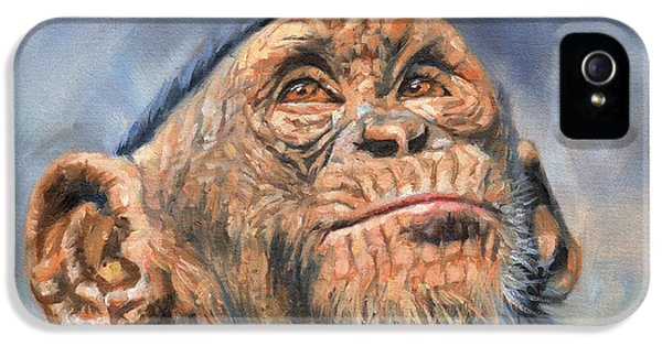 Chimp IPhone 5 / 5s Case by David Stribbling