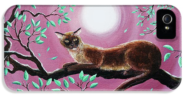 Chocolate Burmese Cat In Dancing Leaves IPhone 5 Case by Laura Iverson