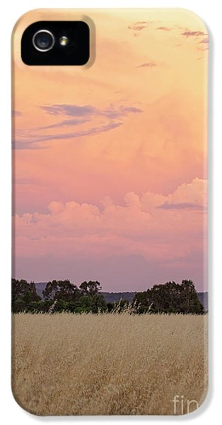 IPhone 5 Case featuring the photograph Christmas Eve In Australia by Linda Lees