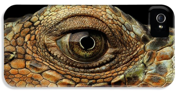 Closeup Eye Of Green Iguana, Looks Like A Dragon IPhone 5 Case by Sergey Taran
