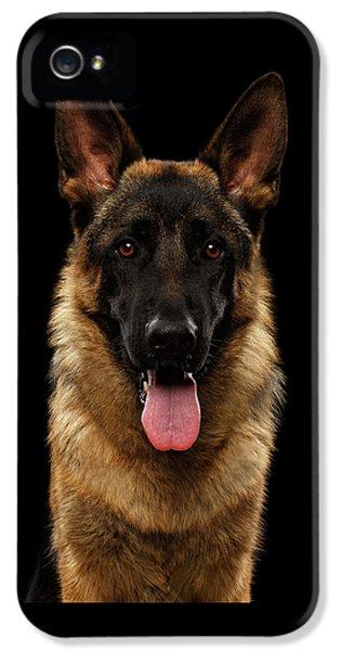 Dog iPhone 5 Case - Closeup Portrait Of German Shepherd On Black  by Sergey Taran