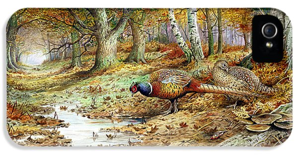 Pheasant iPhone 5 Case - Cock Pheasant And Sulphur Tuft Fungi by Carl Donner