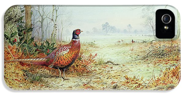 Cock Pheasant  IPhone 5 Case by Carl Donner