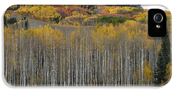 Colorado Splendor IPhone 5 Case by Gary Lengyel