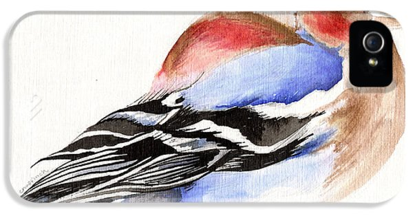 Colorful Chaffinch IPhone 5 Case by Nancy Moniz
