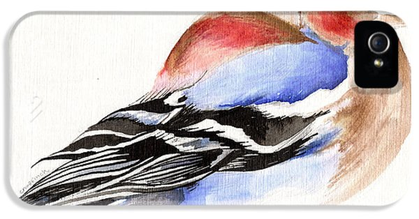 Colorful Chaffinch IPhone 5 / 5s Case by Nancy Moniz