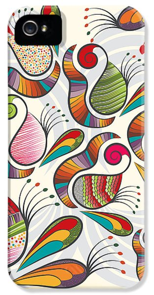Colorful Paisley Pattern IPhone 5 Case
