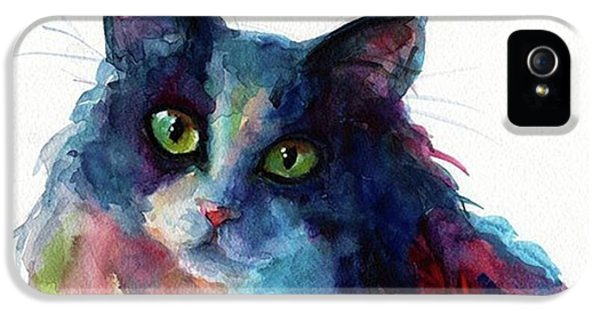 iPhone 5 Case - Colorful Watercolor Cat By Svetlana by Svetlana Novikova
