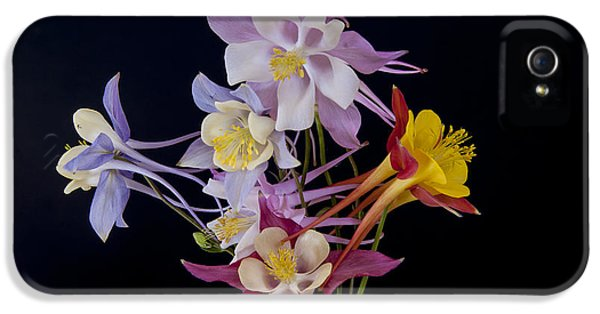 IPhone 5 Case featuring the photograph Columbine Medley by Gary Lengyel