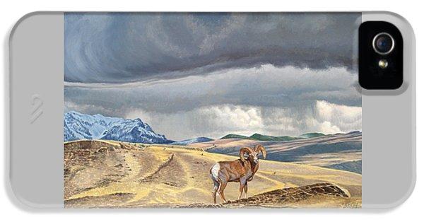 Coming Rainstorm IPhone 5 Case by Paul Krapf