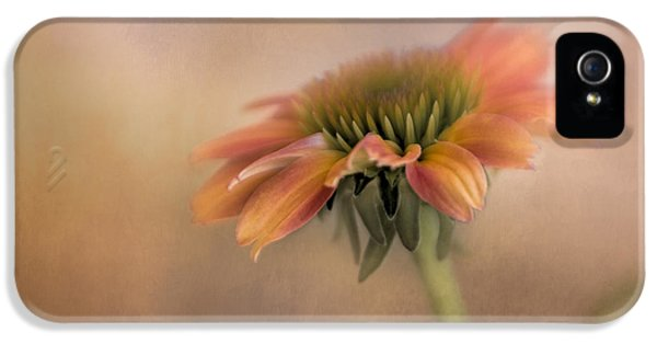 Coneflower II IPhone 5 Case