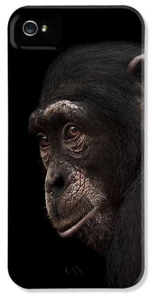 Contemplation IPhone 5 Case by Paul Neville